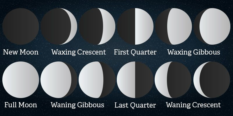 moon facts interesting facts about the moon or luna rh theplanets org Moon Phase Chart Phases of the Moon Elementary